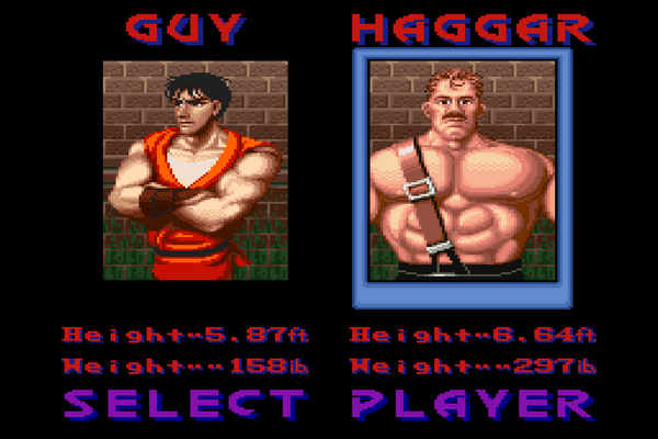 Final Fight Guy PC Game Download
